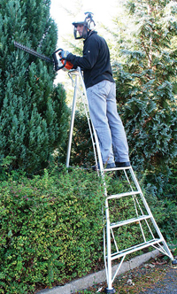Tripod Ladder for cutting tall hedges